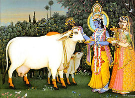 Krishna worships cows
